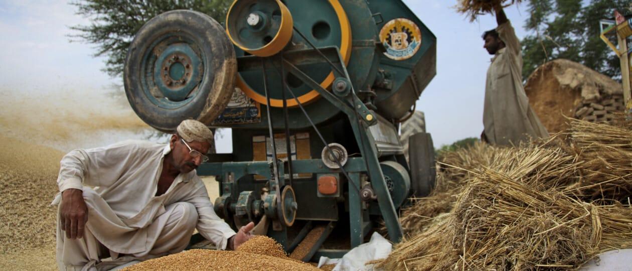 Food Fortification Program (FFP) Pakistan