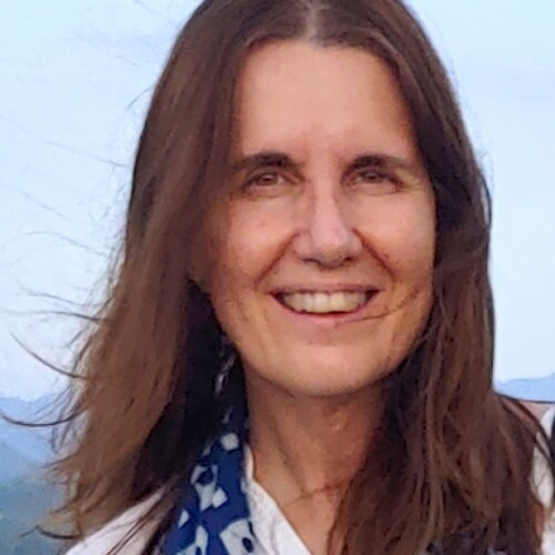 Ann Witteveen