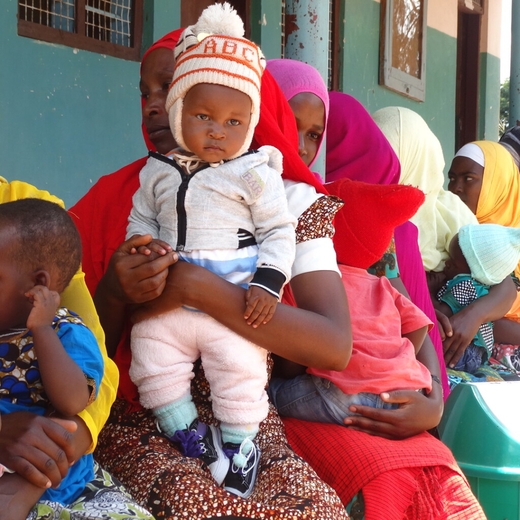 Image of Improving nutrition in Tanzania through technical assistance