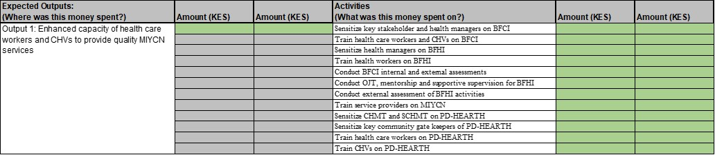 Figure 2 Sample of financial tracking tool from Busia